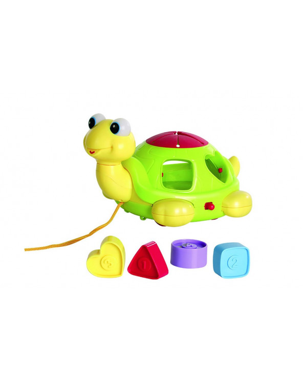 Ocie tortuga con figura OTG0870894