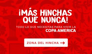 b8078fd1ca banner copamerica 3-1.png
